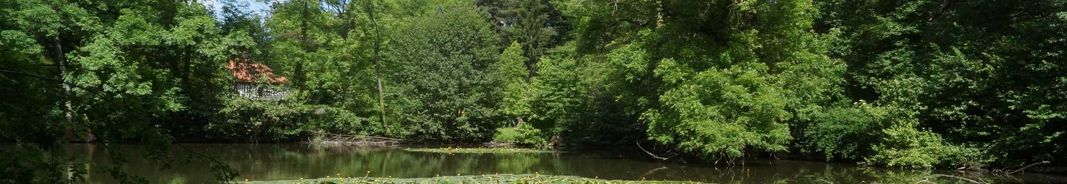Ehrlicher Park