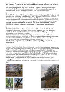 Anregung für mehr Artenvielfalt und Baumschutz auf dem Moritzberg