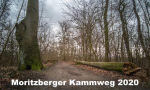 Moritzberger Kammweg 2008